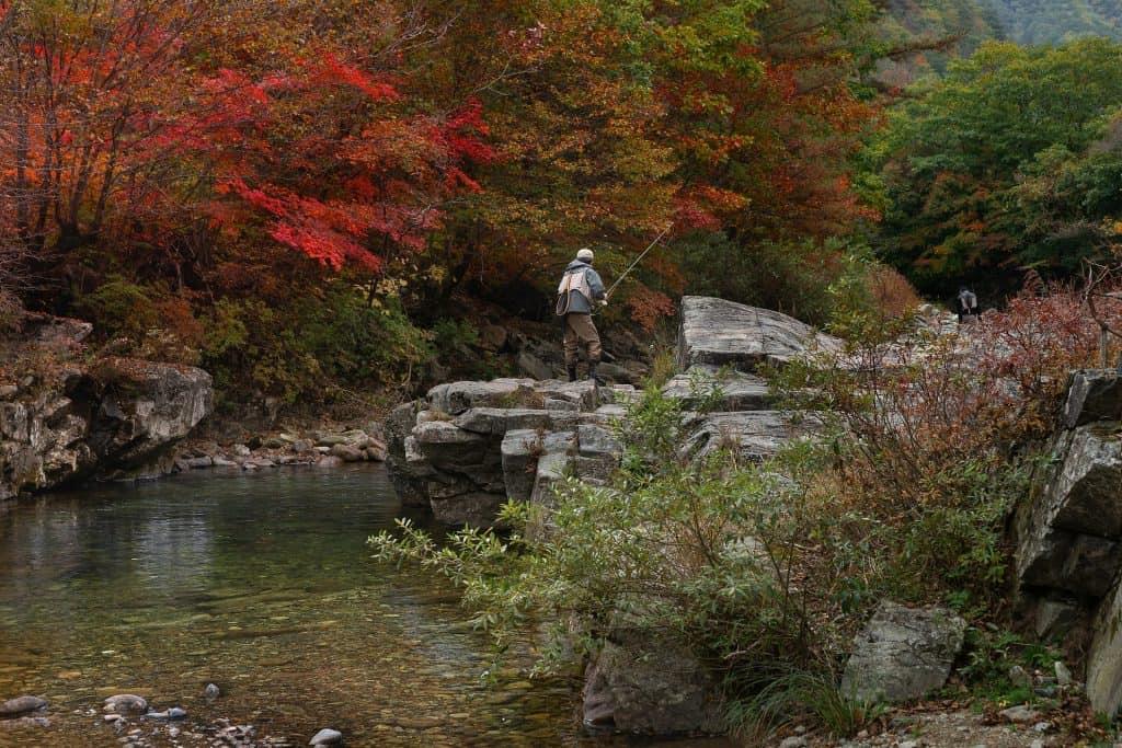 pêche rivière premiere catégorie