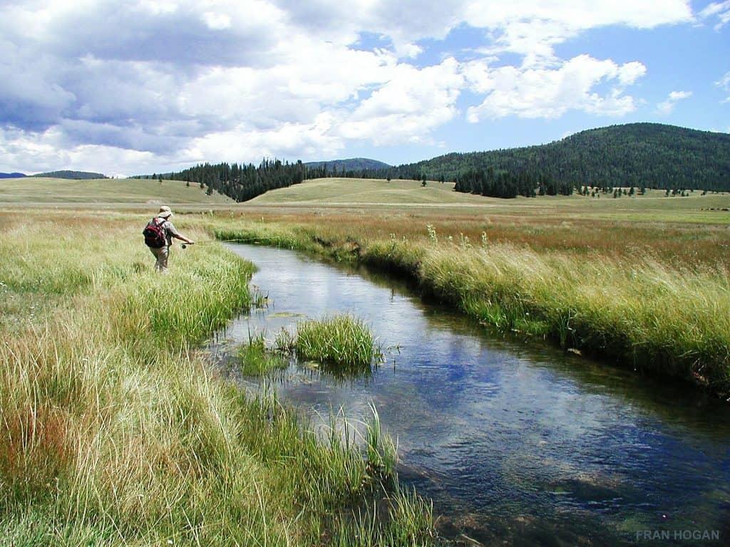 peche truite ruisseau