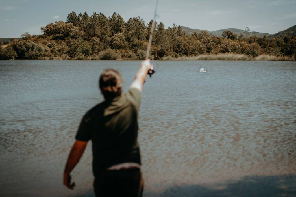fishstone lancer loin